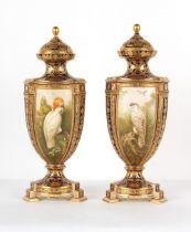 Property of a gentleman - a large pair of mid 19th century Coalport ornithological vases & covers,