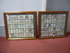Two Different Set of Fifty Original John Player & Sons Gilbert & Sullivan Cigarette Cards, both