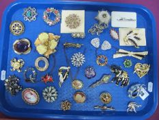 A Mixed Lot of Assorted Costume Brooches, including pair of dress clips, imitation cameo, etc :- One