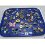 A Collection of Vintage and Later Brooches, including cameo style, diamanté, floral sprays,