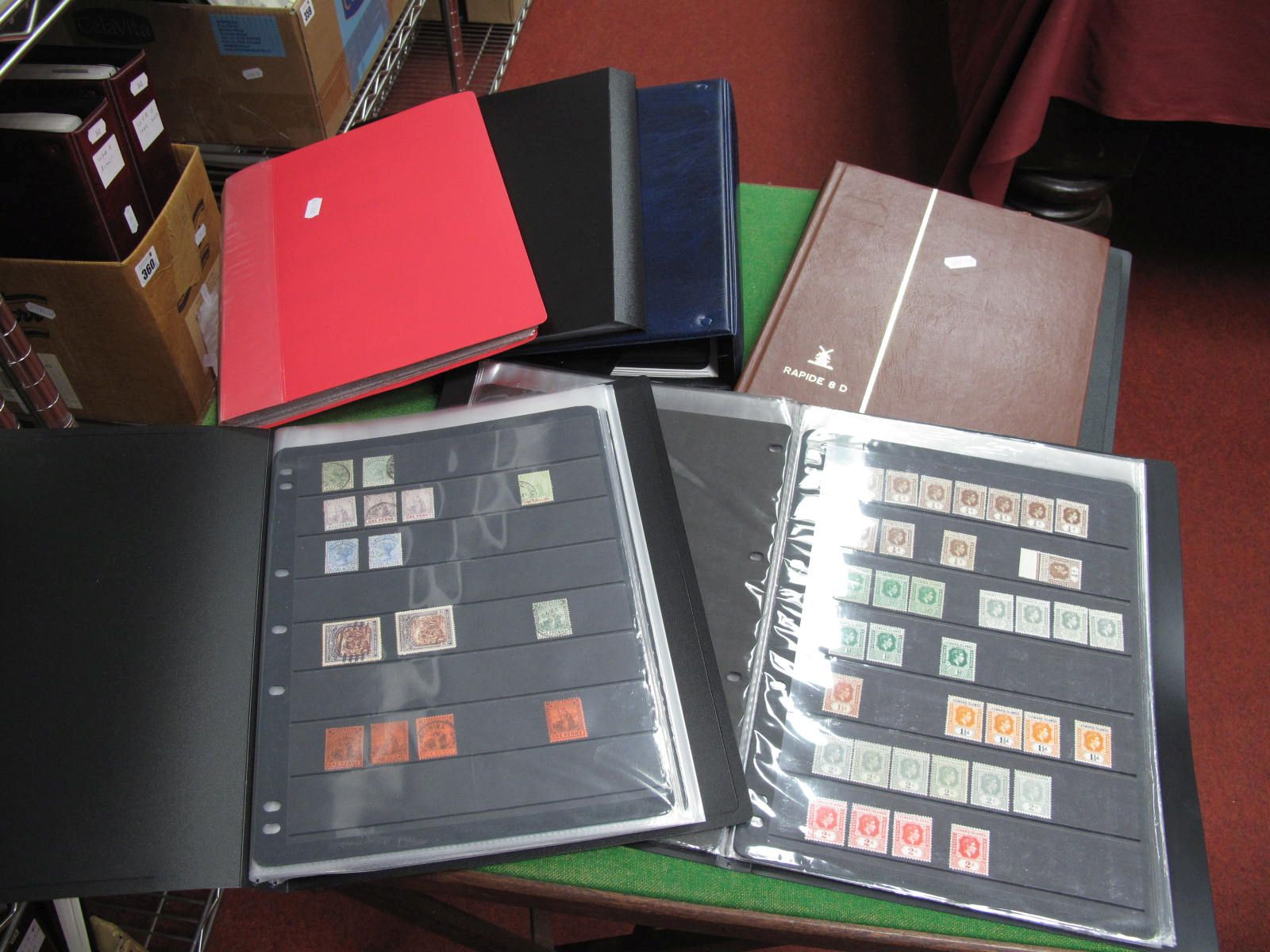 Commonwealth Stamps, mint and used in seven binders, includes Cyprus, Leeward Islands, Ceylon, North