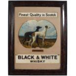 BLACK & WHITE WHISKY ORIGINAL POSTER