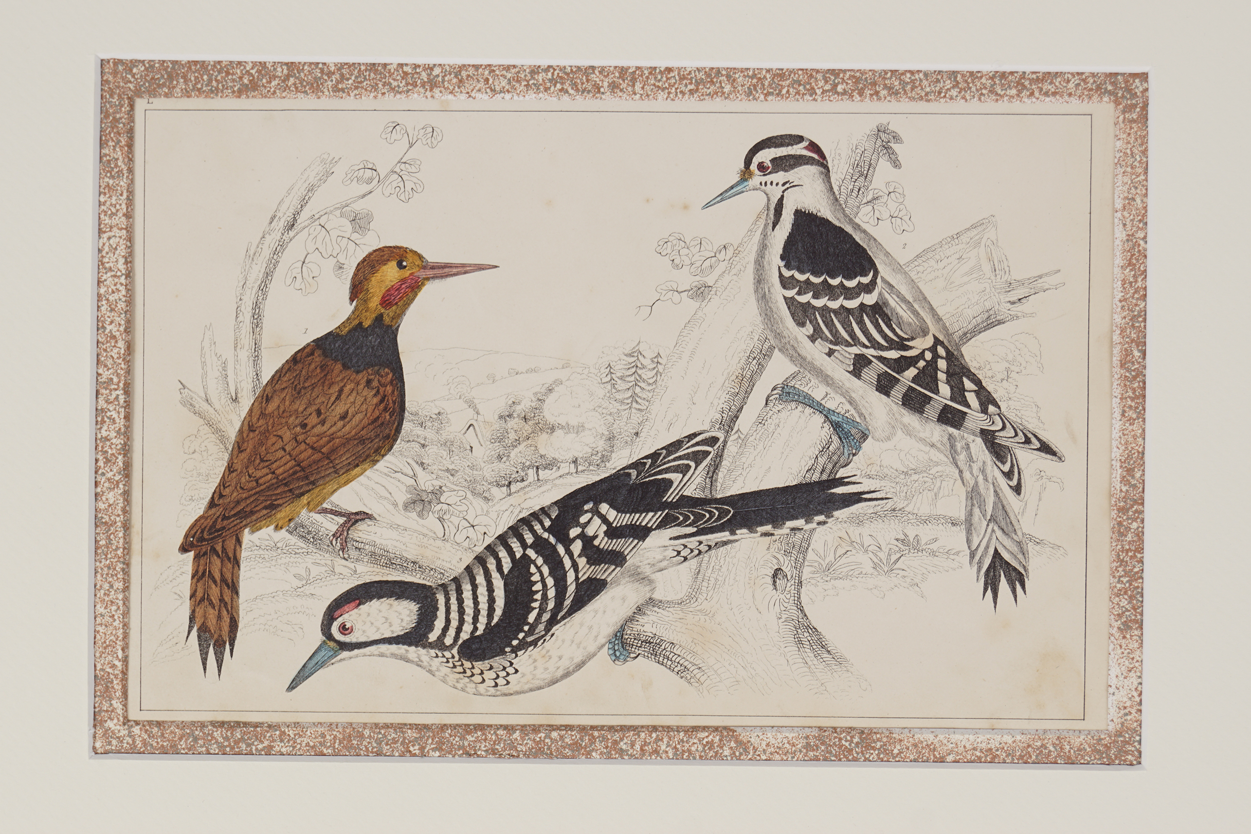 SET OF 4 18TH-CENTURY HAND COLOURED PRINTS - Image 3 of 5