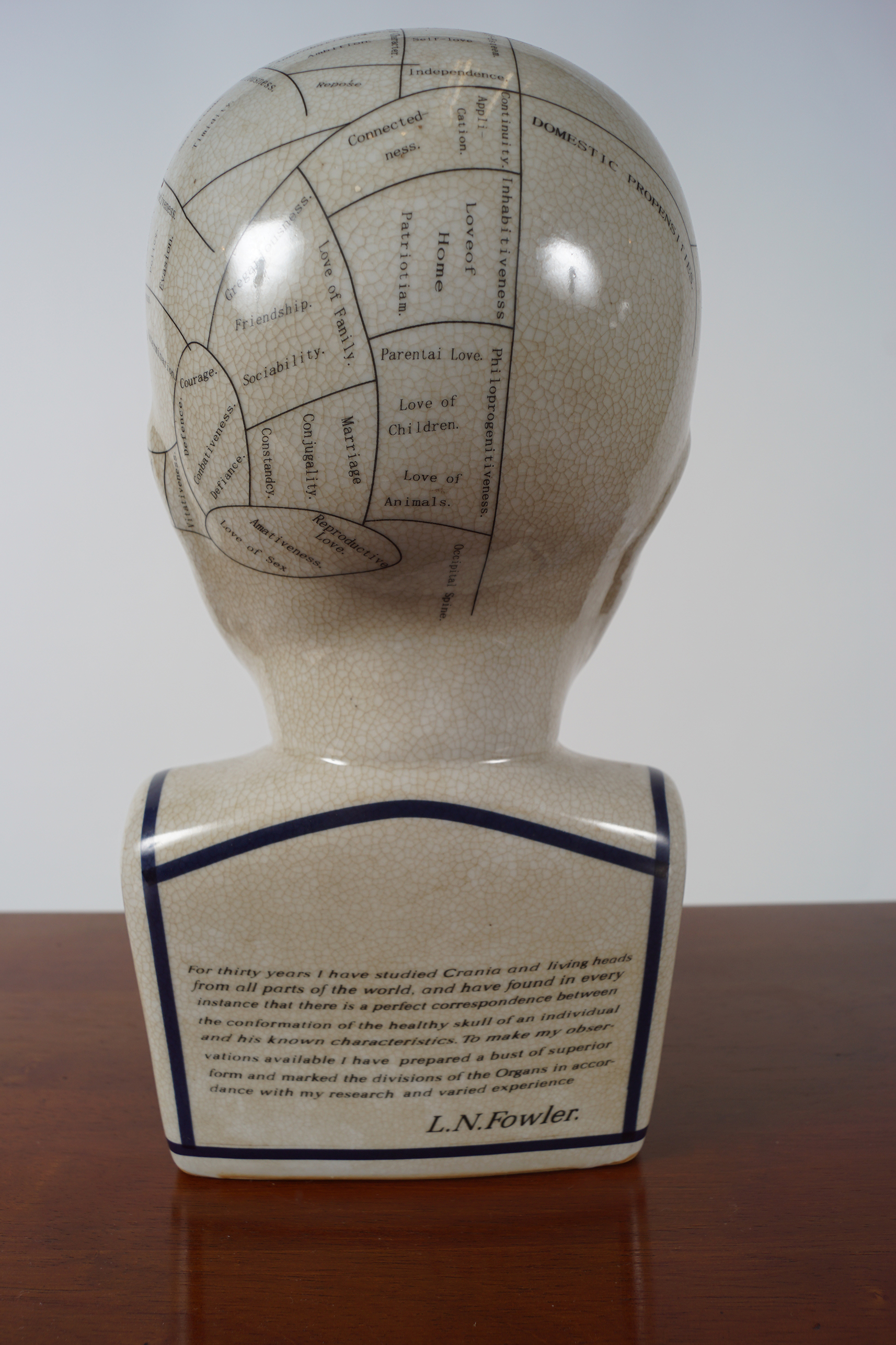 PHRENOLOGY HEAD - Image 3 of 4