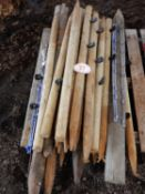 Quantity of timber fencing posts