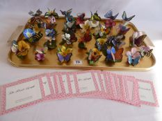 Franklin Mint porcelain butterflies of the world and paradise figures with certificates (27)