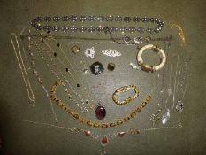 A collection of twenty-two items of costume jewellery, modern, mainly necklaces, a horn hinged