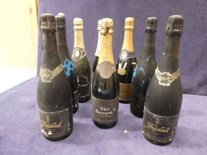 Eight bottles of mixed sparkling wines