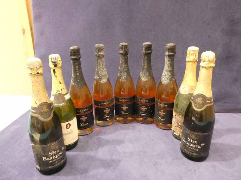 Nine bottles of sparkling rose and other sparkling wines