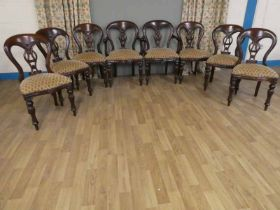 Mid century set of eight mahogany buckle back dining chairs , six and two carvers