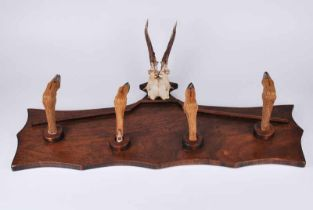 An early to mid-twentieth century wall mounted hat rack with taxidermy Roe deer slots as pegs and