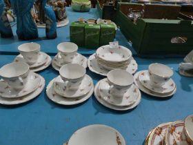 A Mayfair rosebud 23 piece tea set.