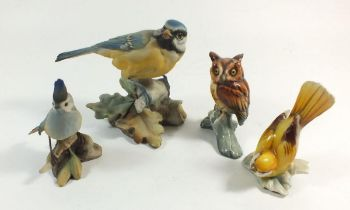 A Tay owl, a yellow bird, a blue tit and a crested tit by Guiseppe Tagliariol
