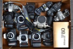 A Tray of SLR Camera Bodies, Including Nikon F80 (3), F401, F70, F65 (2), N5005, Canon EOS 50e,