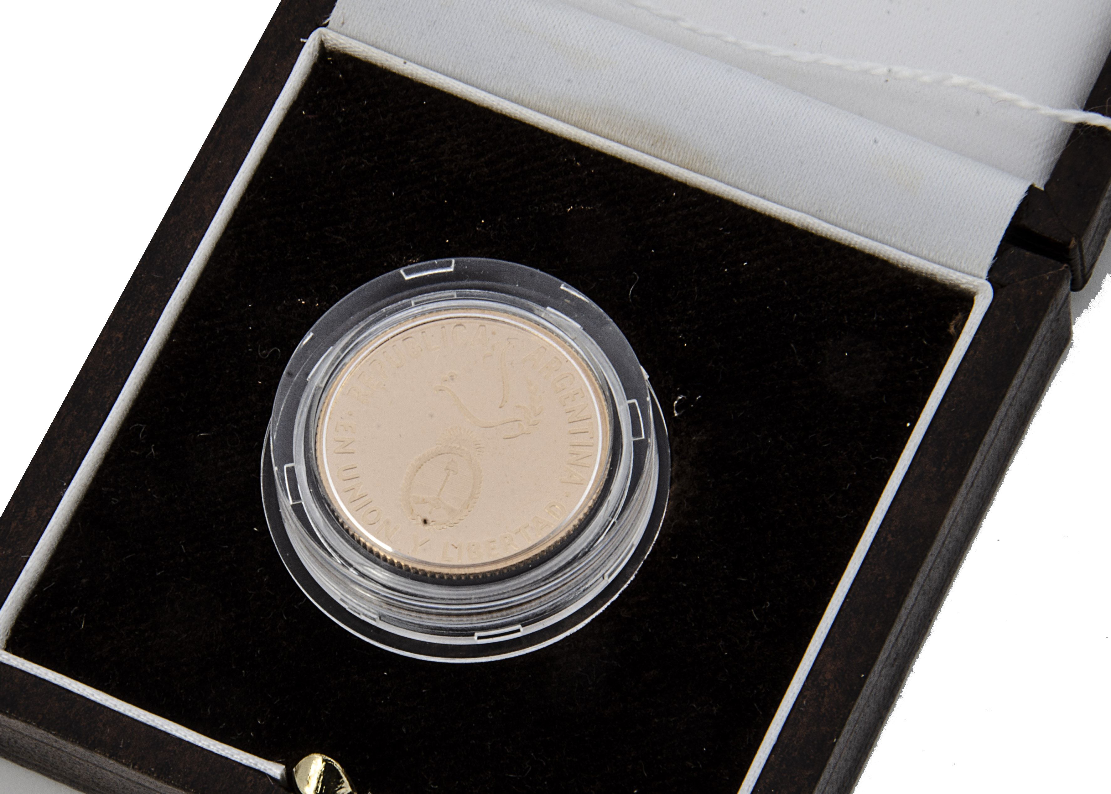 A modern Republic of Argentina Gold Proof £5 coin, 1995, with certificate, 8.064g, 900 fineness, - Image 2 of 2