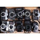 A Tray of 35mm SLR Film Camera Bodies, including Canon EOS 600, 1000FN, Nikon F-401, F65, Minolta