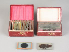 An early 19th Century rare and important group of Fossilised Wood Section Microscope Slides and