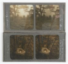 Early 20th Century Stereoscopic Glass Diapositives, taken by very competent amateur or