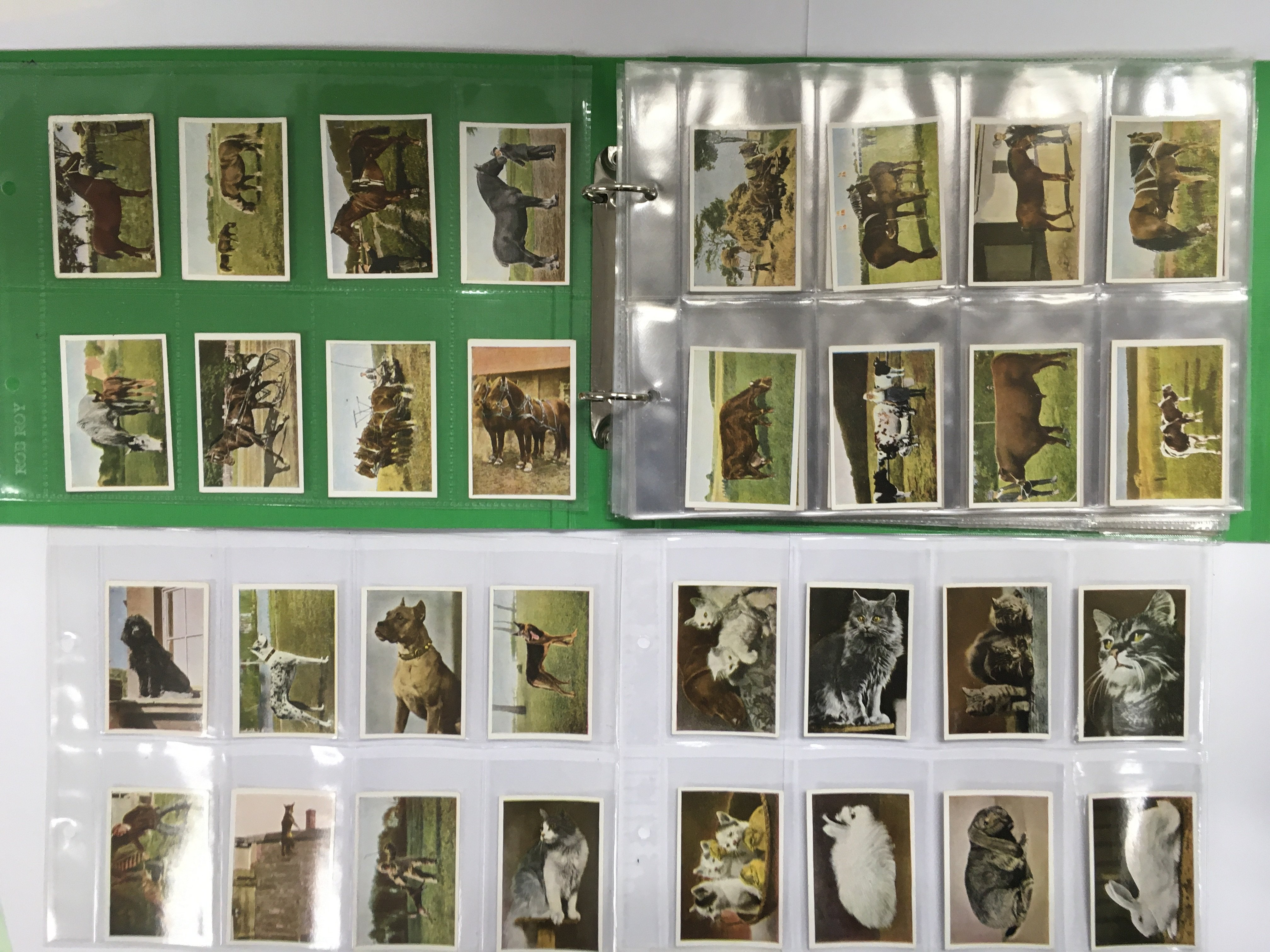 A complete set of 162 Rich & Serie cigarette cards
