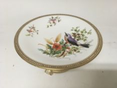 A Worcester comport hand pained with birds flowers