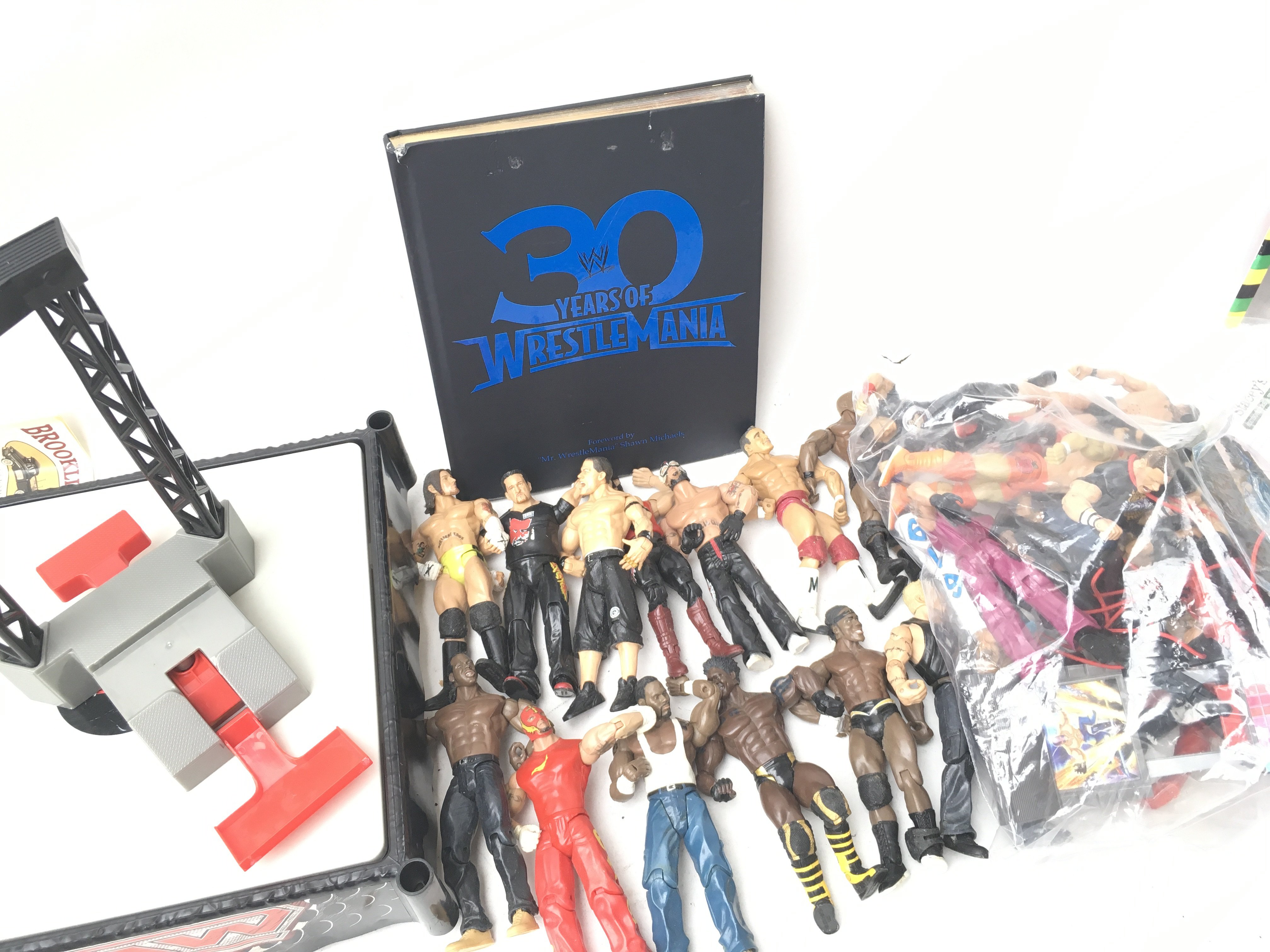 A Collection Of WWE Figures, Ring and Book.