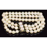 A three strand cultured pearl bracelet, the 9ct gold clasp set with sapphires and pearls