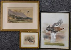 Three watercolours of birds, one a pair of grouse on the ground, 8 x 10cm, another a grouse in