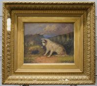 G Langton oil on board of a terrier by rabbit hole, 19 x 24cm