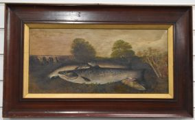 Oil on canvas study of four salmon/trout with river landscape beyond, indistinctly signed lower