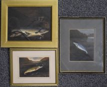 Three oil on board studies of fish, one of the days catch with fishing reel, net and creel on the