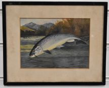 A. Roland Knight watercolour of a leaping salmon caught on a line, with river landscape beyond,
