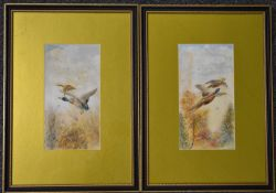 William E Powell (Royal Worcester artist), pair of watercolour studies of birds in flight, both