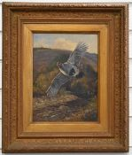 M. Heywood oil on canvas study of a grouse in flight with river landscape beyond, signed lower