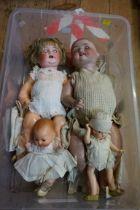 Four various dolls, comprising: a Heubach Koppelsdorf 300-5; a Simon & Halbig 156/8; an Armand