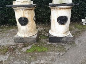 Pedestals and stands: A pair of rare cast iron pedestals, Irish, 19th century, with applied