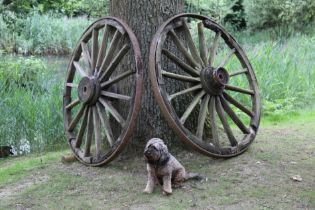 A pair of iron rimmed wooden wagon wheels