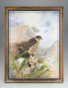 A.J. ARMITSTEAD, A TAXIDERMY MERLIN MOUNTED IN A GLAZED WALL CASE IN A NATURALISTIC SETTING WITH A