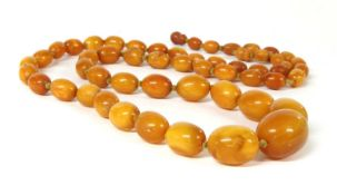 A single row graduated olive-shaped butterscotch amber bead necklace,