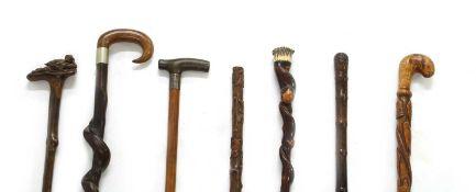 Seven walking sticks,