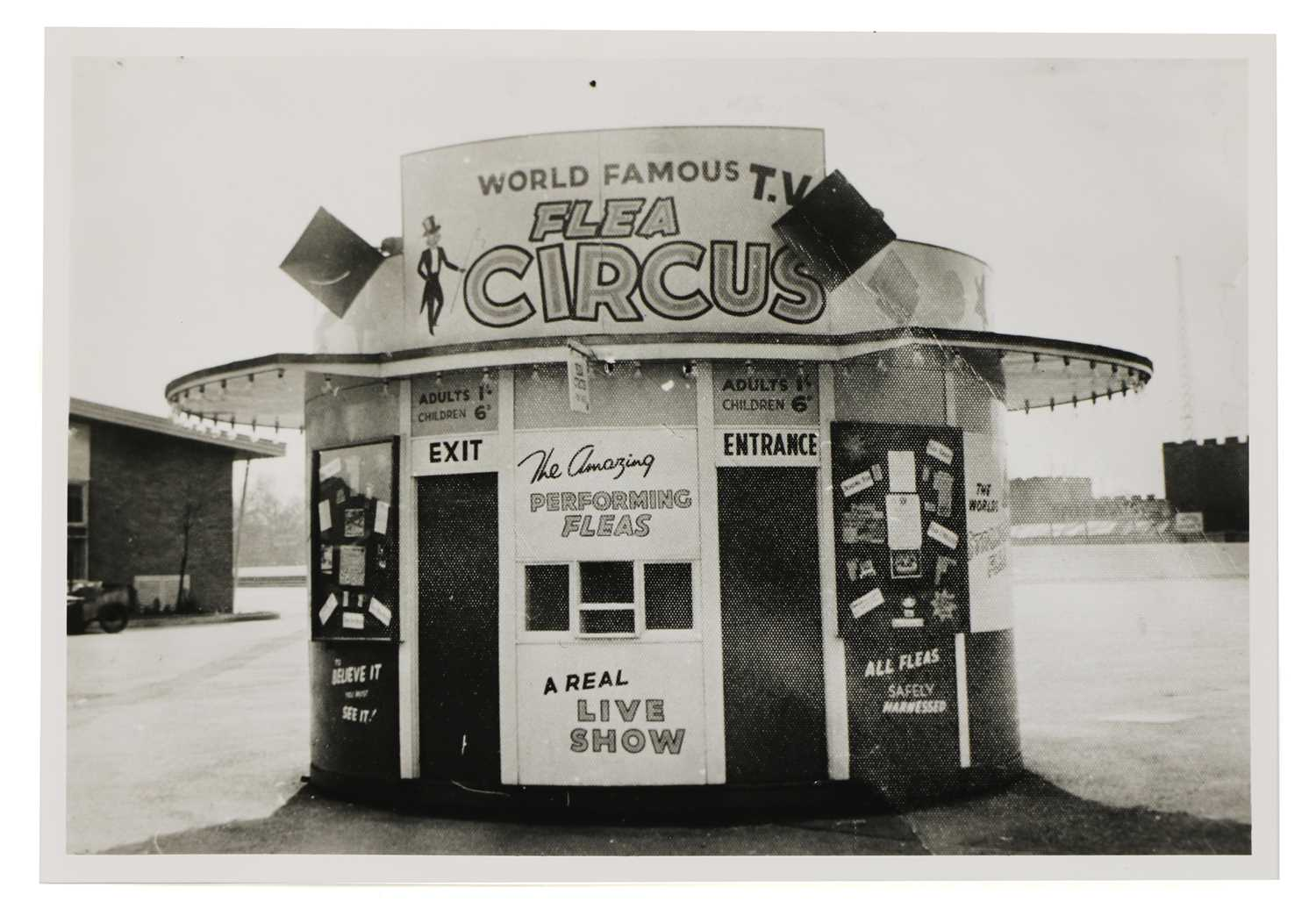 THE WORLD FAMOUS FLEA CIRCUS, - Image 3 of 8