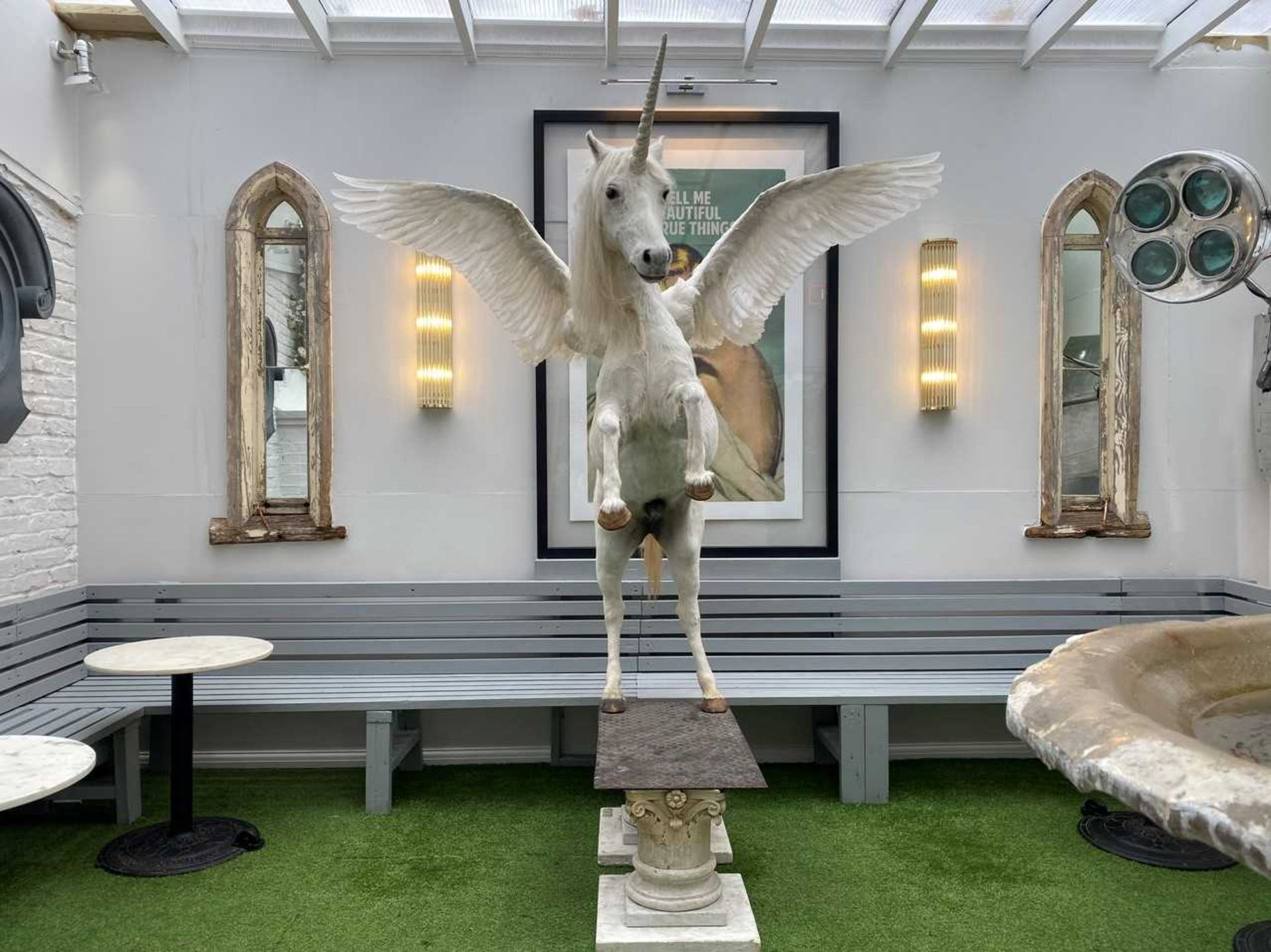 A TAXIDERMY ALICORN, - Image 2 of 2