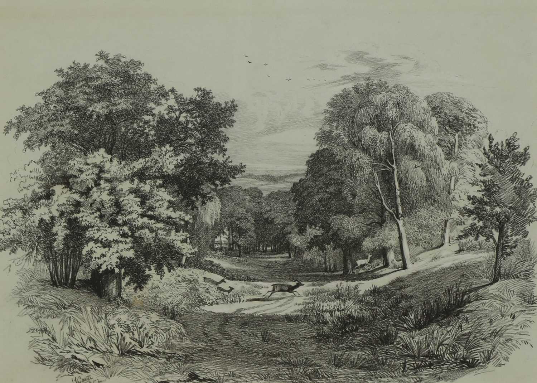 Samuel John Carter (1835-1892) - Image 3 of 12