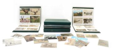 Five albums and a box of over 700 postcards and photographs relating to deer, stalking