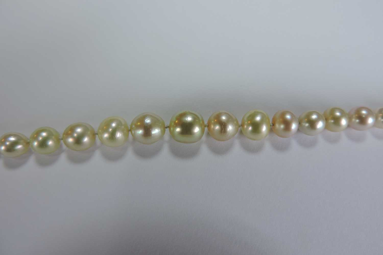 A single row graduated natural saltwater pearl necklace, - Image 6 of 12