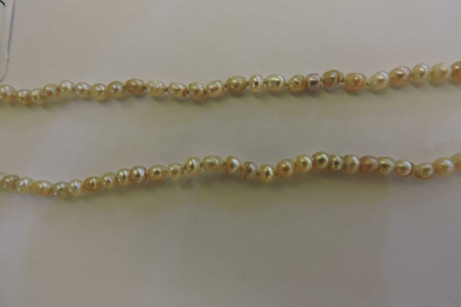 A single row graduated pearl necklace, - Image 7 of 7