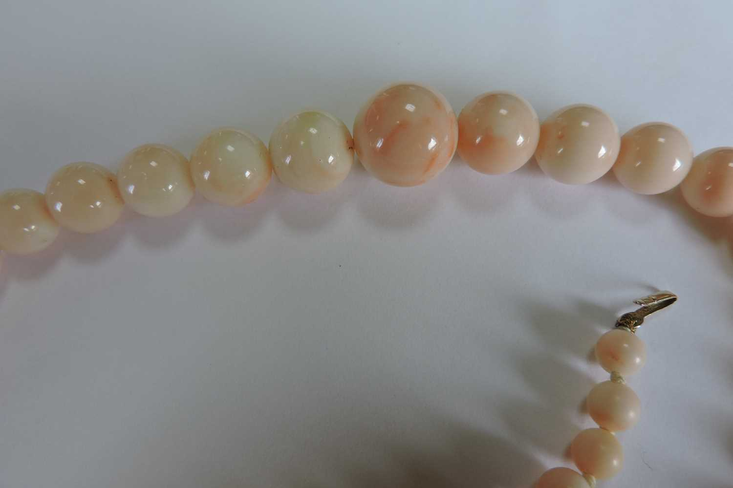 A single row graduated angel skin coral bead necklace, - Image 3 of 4