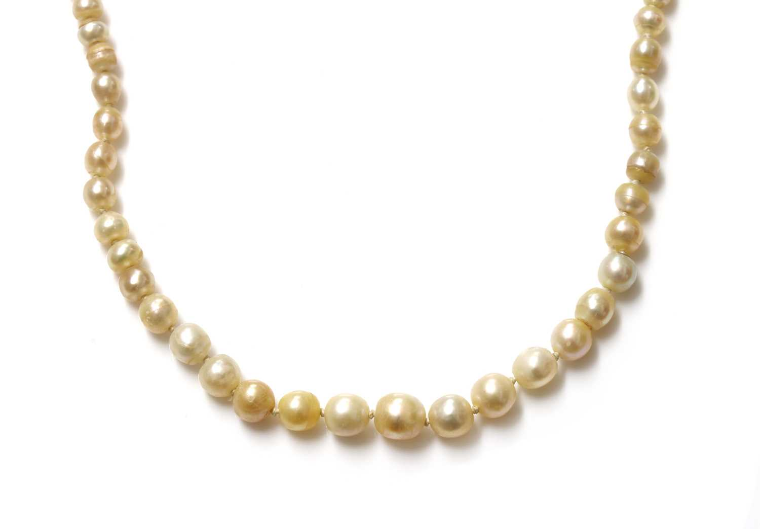 A single row graduated pearl necklace, - Image 3 of 7