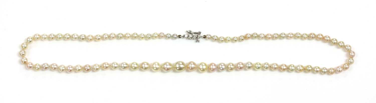 A single row graduated natural saltwater pearl necklace,