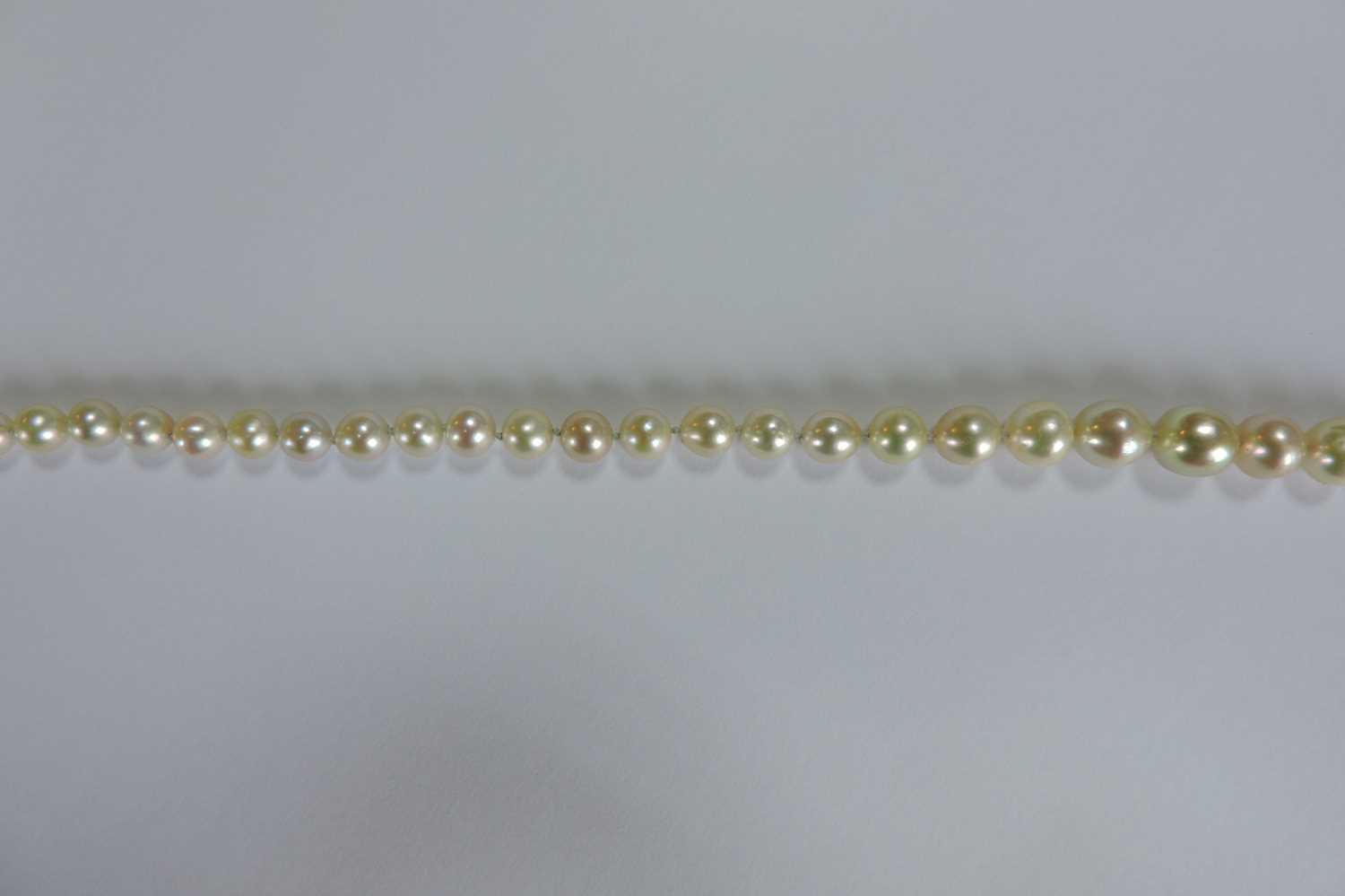 A single row graduated natural saltwater pearl necklace, - Image 11 of 12