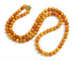 A single row uniform spherical butterscotch amber bead necklace,